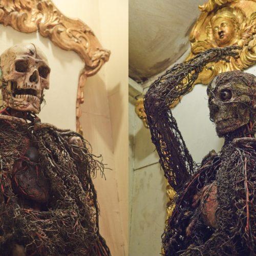 Macchine anatomiche Cappella Sansevero