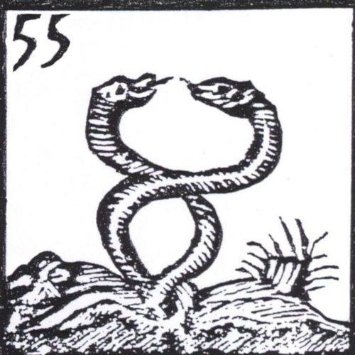 V serpente